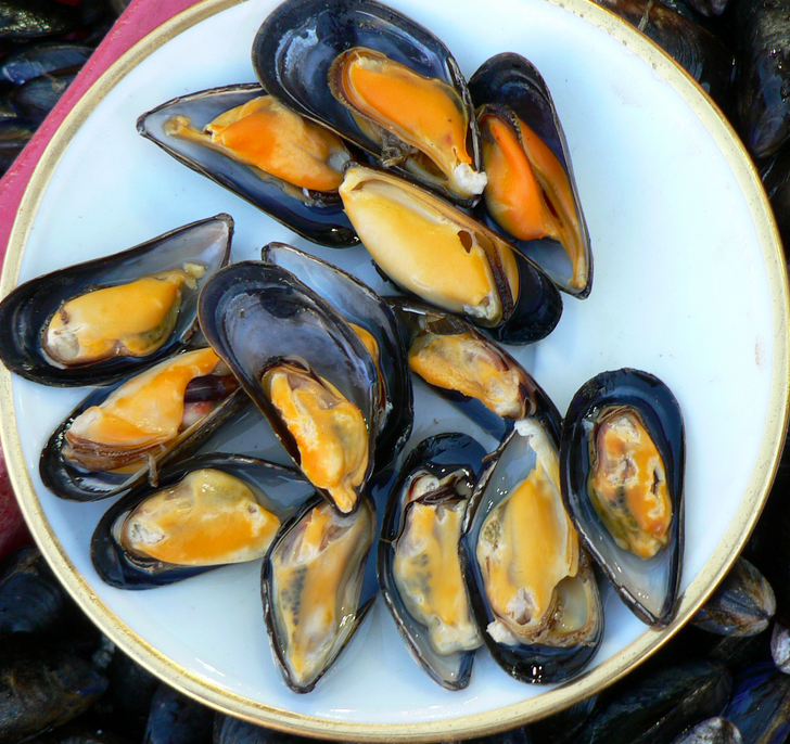 Black Mussels in Spicy Tomato Sauce | Local Wild Food Challenge